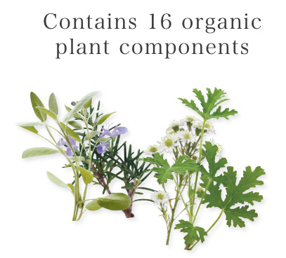 Contains 16 organic plant components